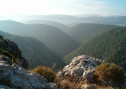 Wzgórza Galilei (fot. S. Lederhendler)